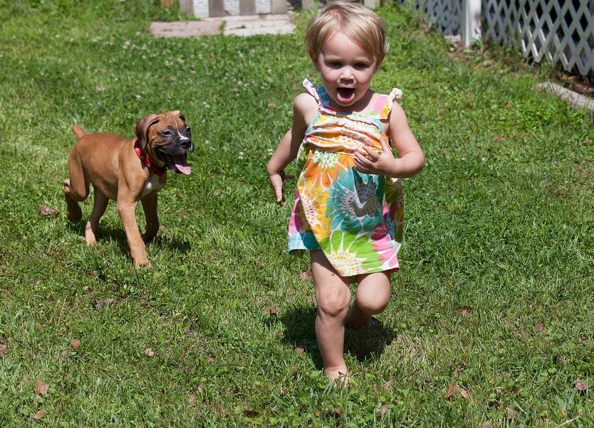 cainele cel mai bun prieten pentru copii