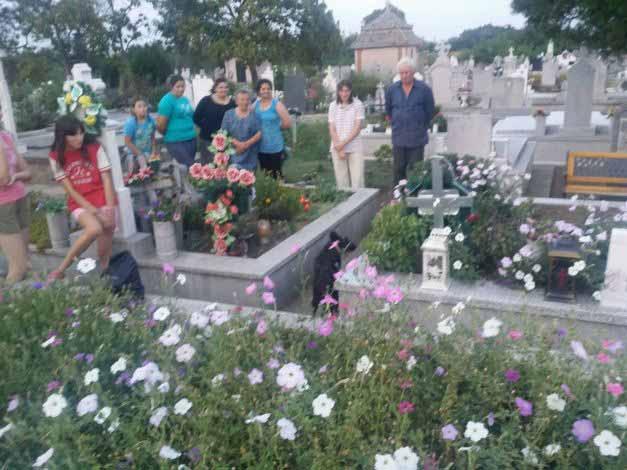 caine ingropat de viu in cimitir