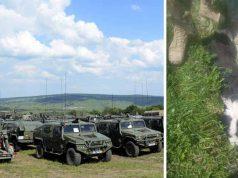 militar român a călcat un câine