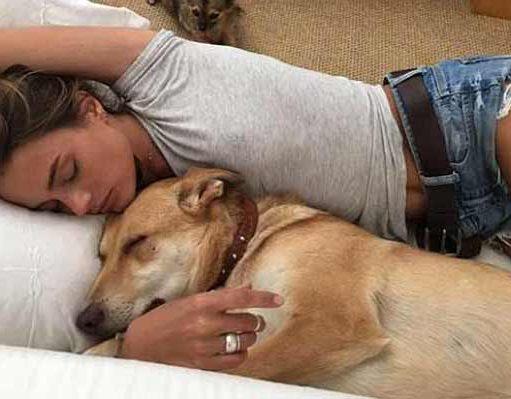 doarmă în pat cu un câine
