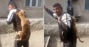 strânge de gât un câine