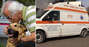 câine a murit apărându-şi stăpânul