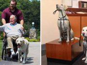 câinele lui George Bush